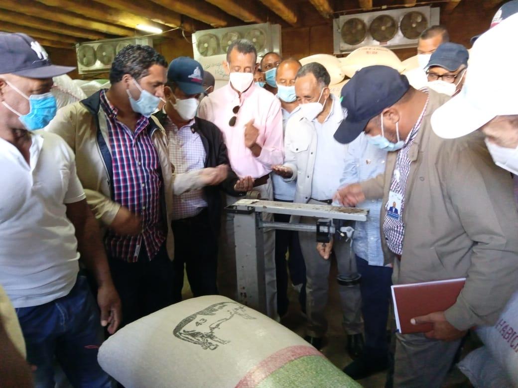 Agricultura compra 30 mil quintales semillas de habichuelas a productores de San Juan