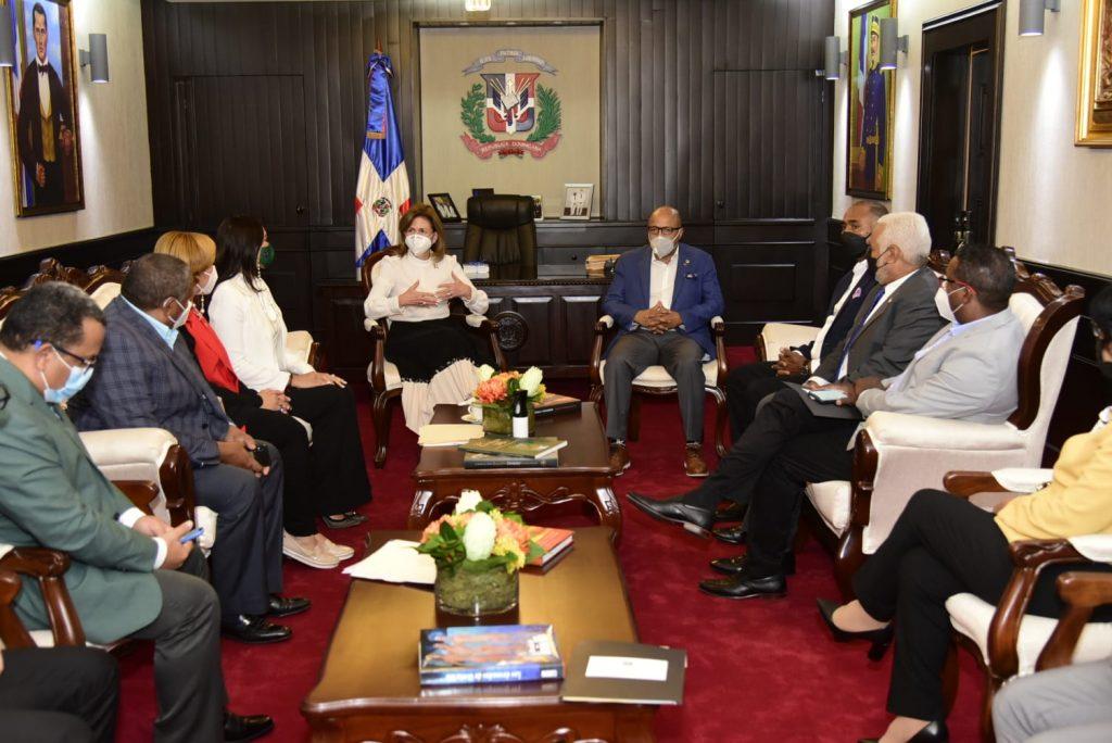 Reunión de la vicepresidenta Peña con diputados